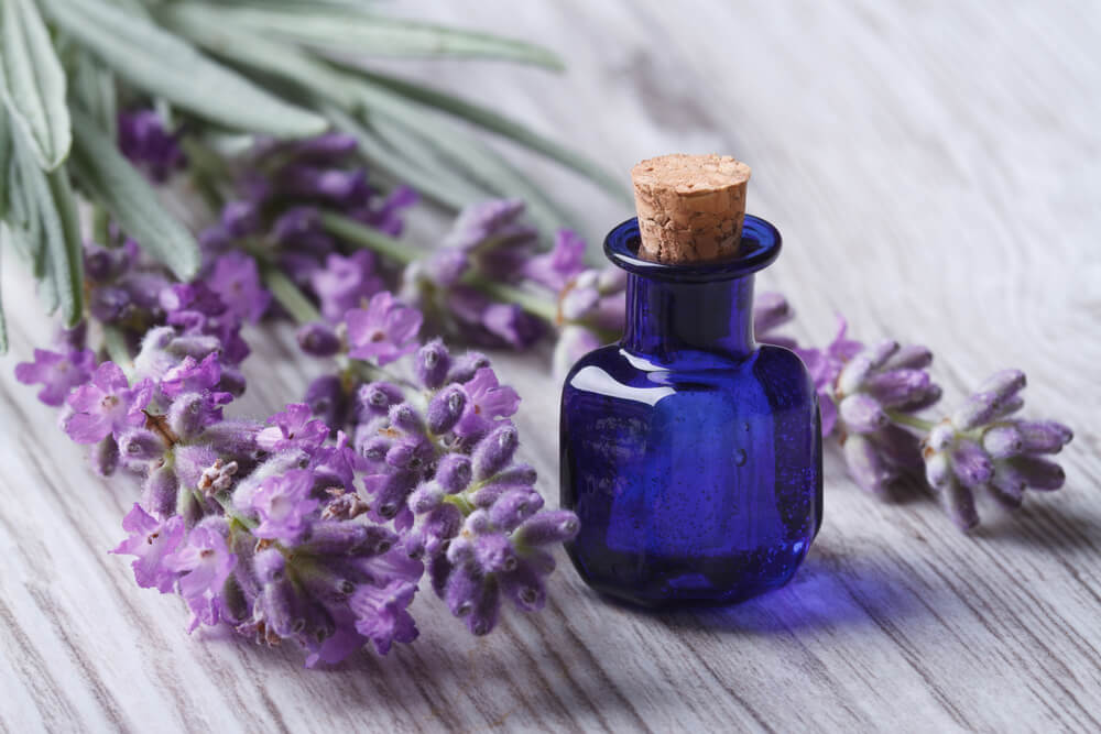 5 Skin Care Benefits Of Lavender Oil That You Need To Know