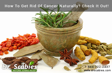 How To Get Rid Of Cancer Naturally? Check It Out!