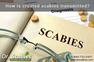 How is crusted scabies transmitted?