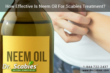 How Effective Is Neem Oil For Scabies Treatment?