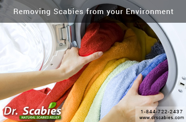 Removing Scabies from your Environment