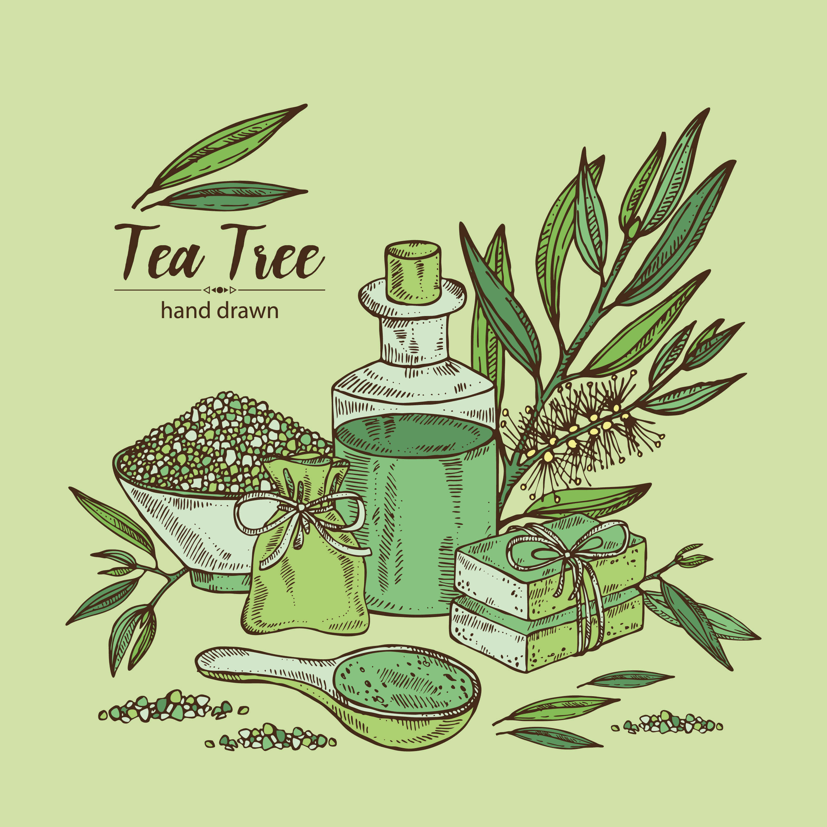 Tea Tree Oil and Scabies- It is a complete solution?
