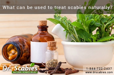 What can be used to treat scabies naturally?